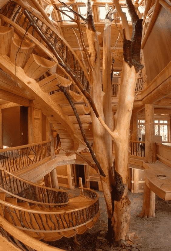 5 erdei luxusház