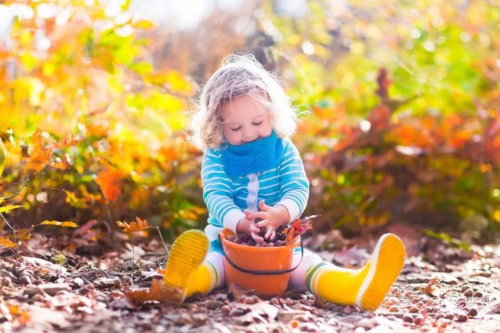 Nyár végi munkálatok: így készítsd fel kertedet a hűvös időkre