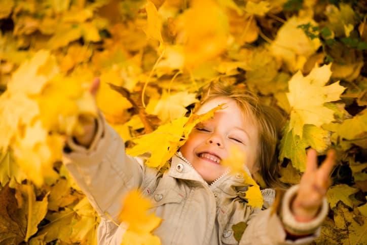 Itt az ősz, jönnek a hulló levelek – De mihez kezdjünk velük?