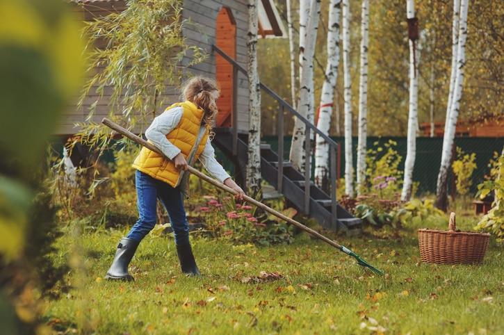 Ezek a legtutibb szerszámok a lehullott levelek eltakarítására