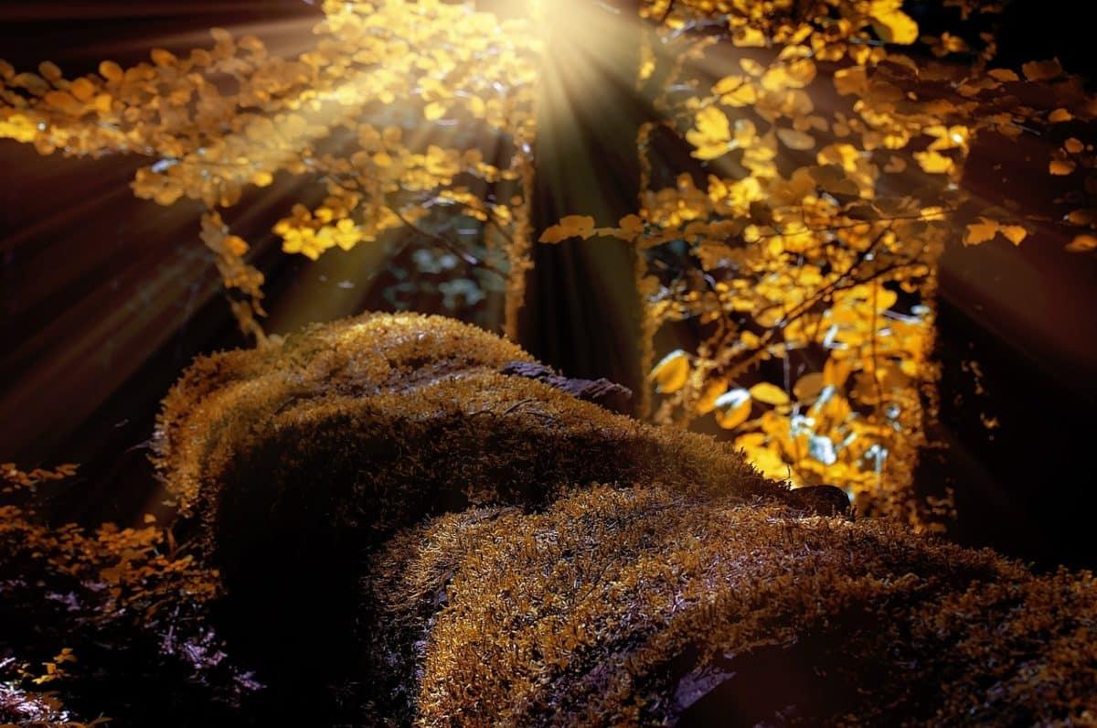 Utazni jó: eláll a lélegzeted, ha meglátod ezeket az őszi tájakat