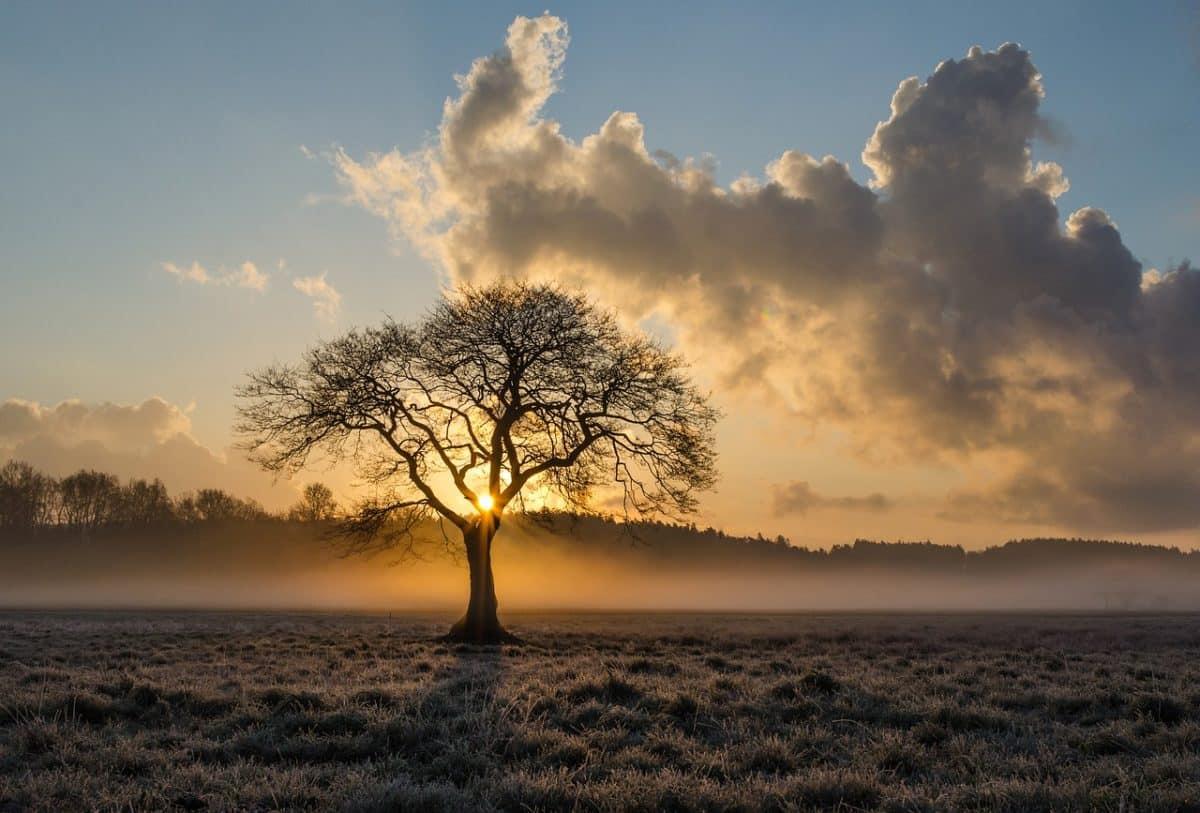 A hűvös őszi reggelek természetes velejárója – És még mit tudsz mondani róla?