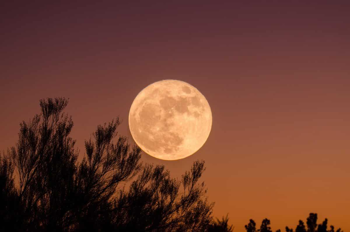 Figyelem, amatőr csillagászok: érdemes figyelni a januári égboltot!